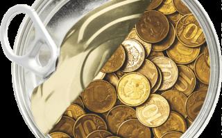 Как прожить на 14000 рублей в месяц
